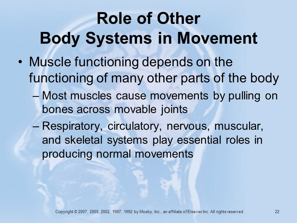 Role of Other Body Systems in Movement