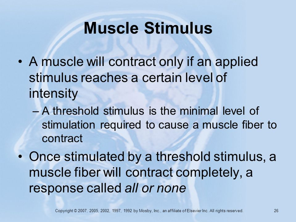 Muscle Stimulus A muscle will contract only if an applied stimulus reaches a certain level of intensity.