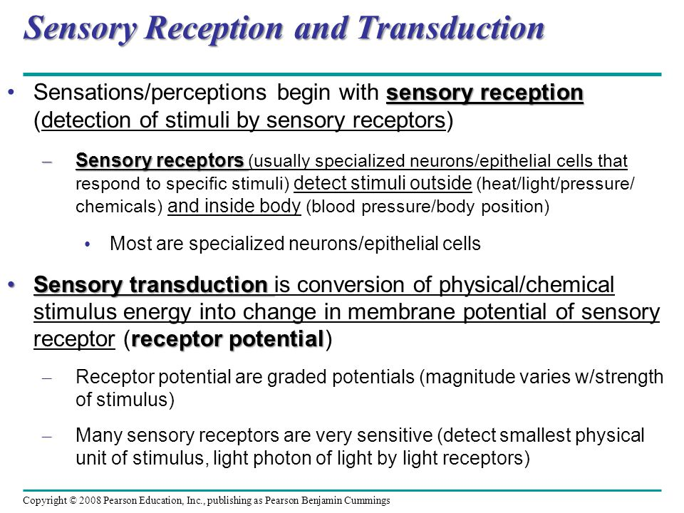 Sensory Reception and Transduction