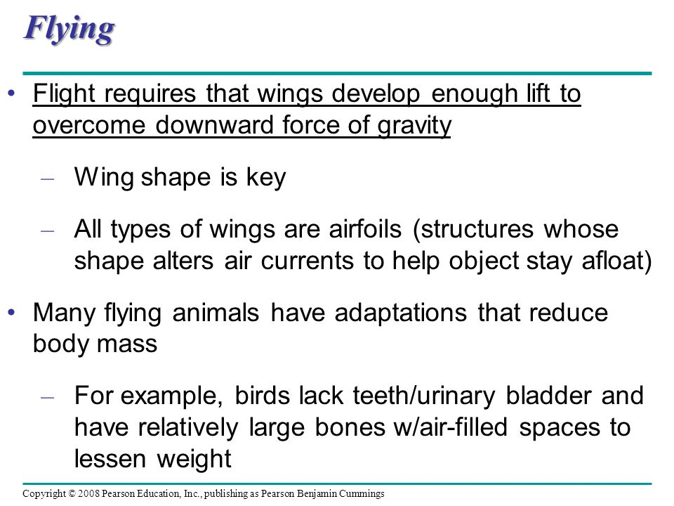 Flying Flight requires that wings develop enough lift to overcome downward force of gravity. Wing shape is key.