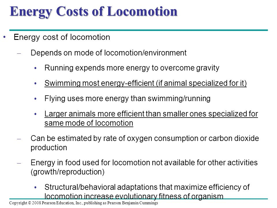 Energy Costs of Locomotion