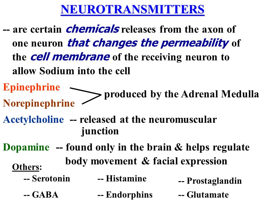 NEUROTRANSMITTERS -- are certain chemicals releases from the axon of