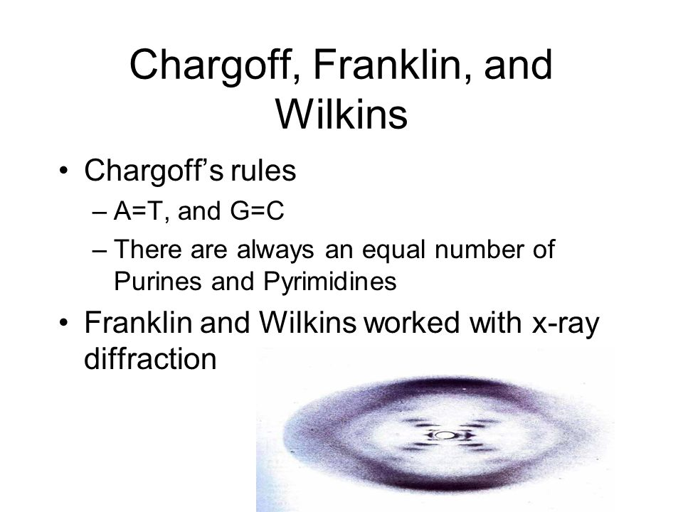 Chargoff, Franklin, and Wilkins
