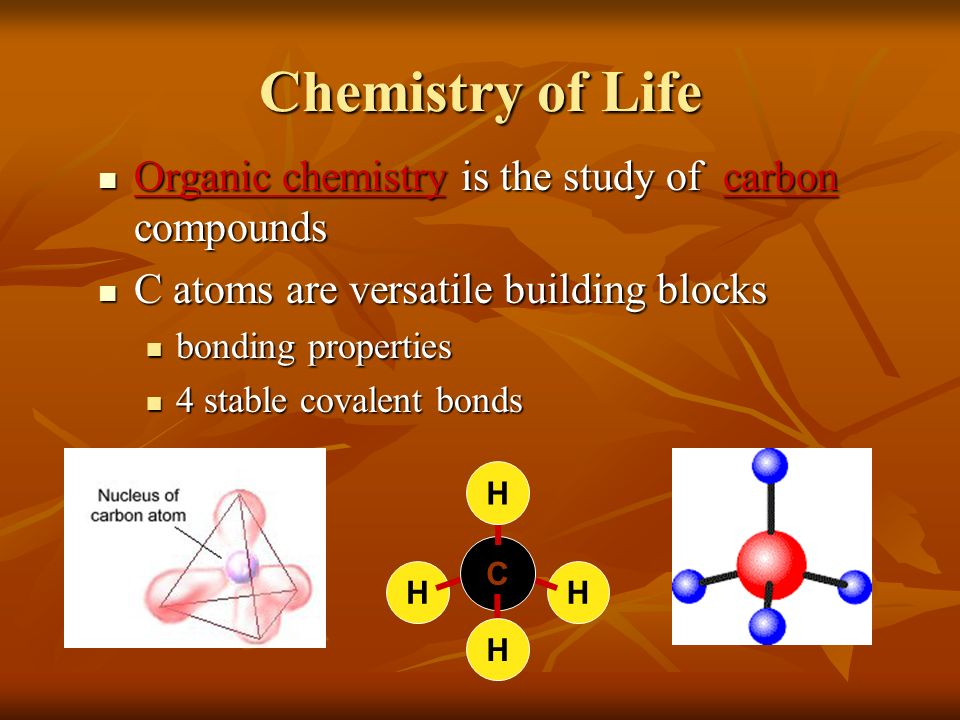 Chemistry of Life Organic chemistry is the study of carbon compounds