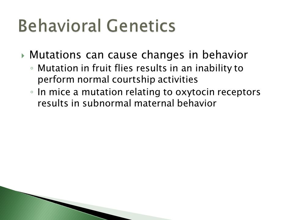 Behavioral Genetics Mutations can cause changes in behavior