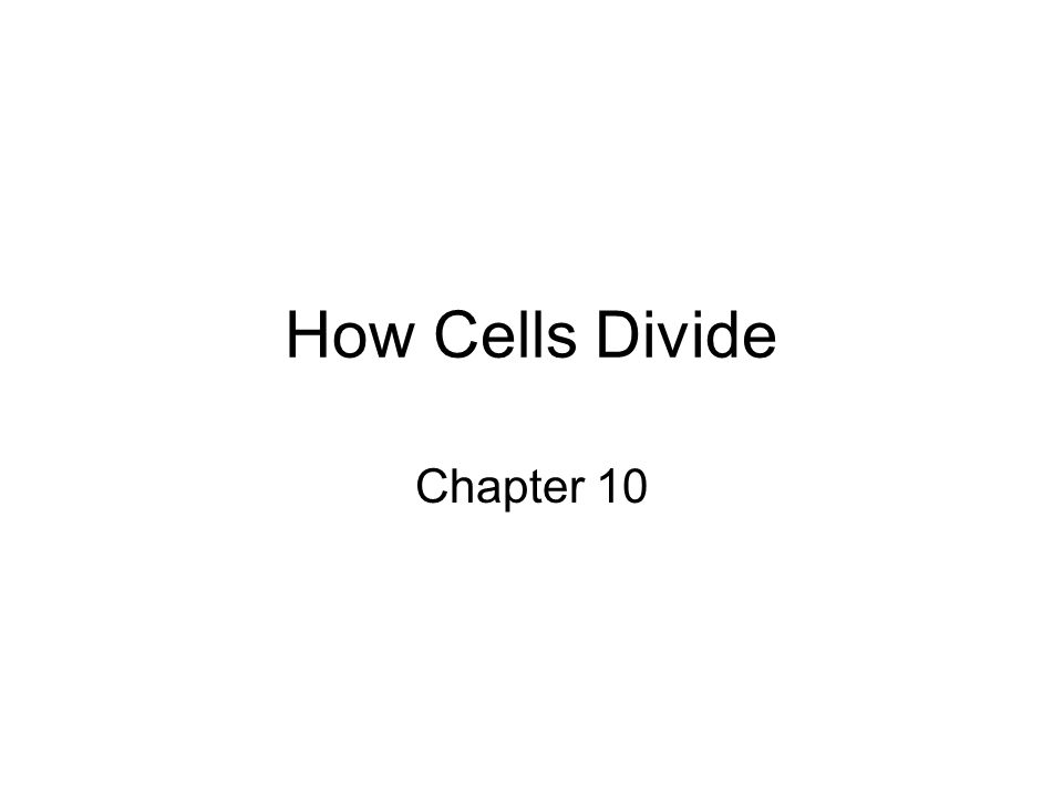 How Cells Divide Chapter 10