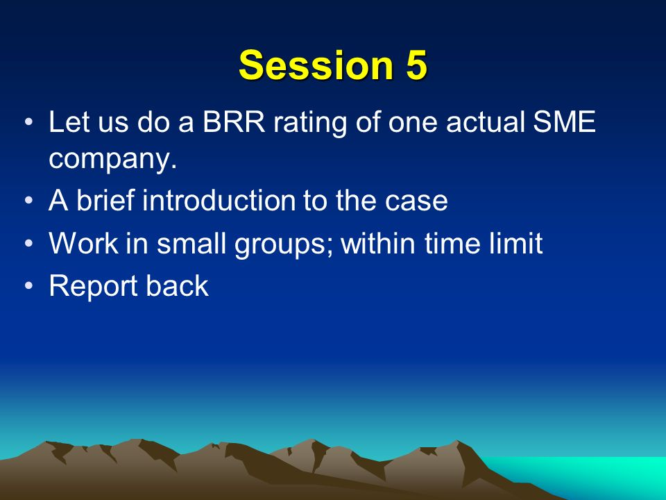 Session 5 Let us do a BRR rating of one actual SME company.