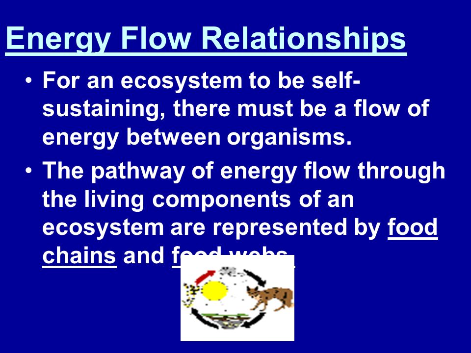 Energy Flow Relationships
