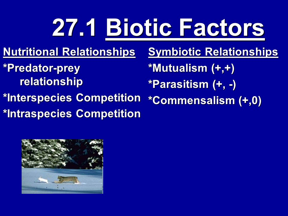 27.1 Biotic Factors Nutritional Relationships