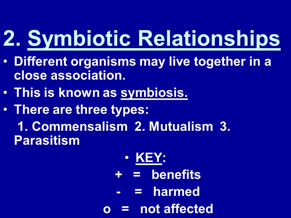 2. Symbiotic Relationships