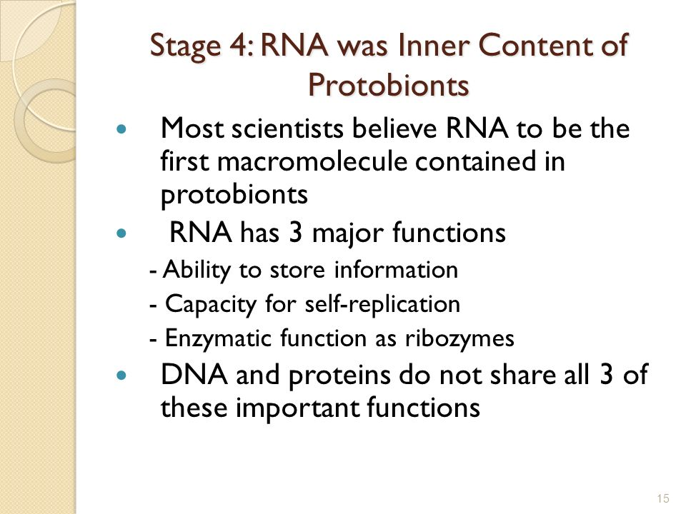 Stage 4: RNA was Inner Content of Protobionts