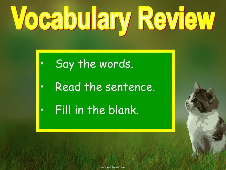Vocabulary Review Say the words. Read the sentence. Fill in the blank.