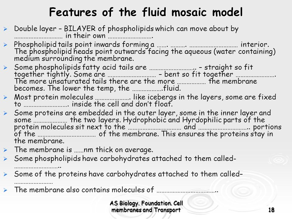 Features of the fluid mosaic model