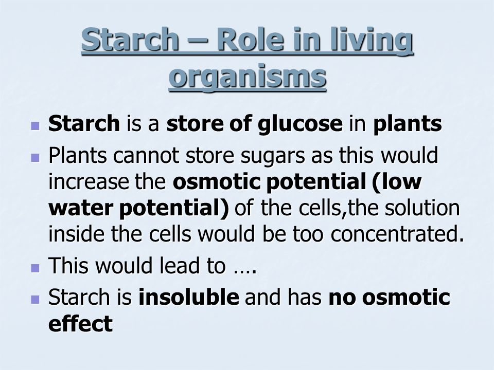 Starch – Role in living organisms
