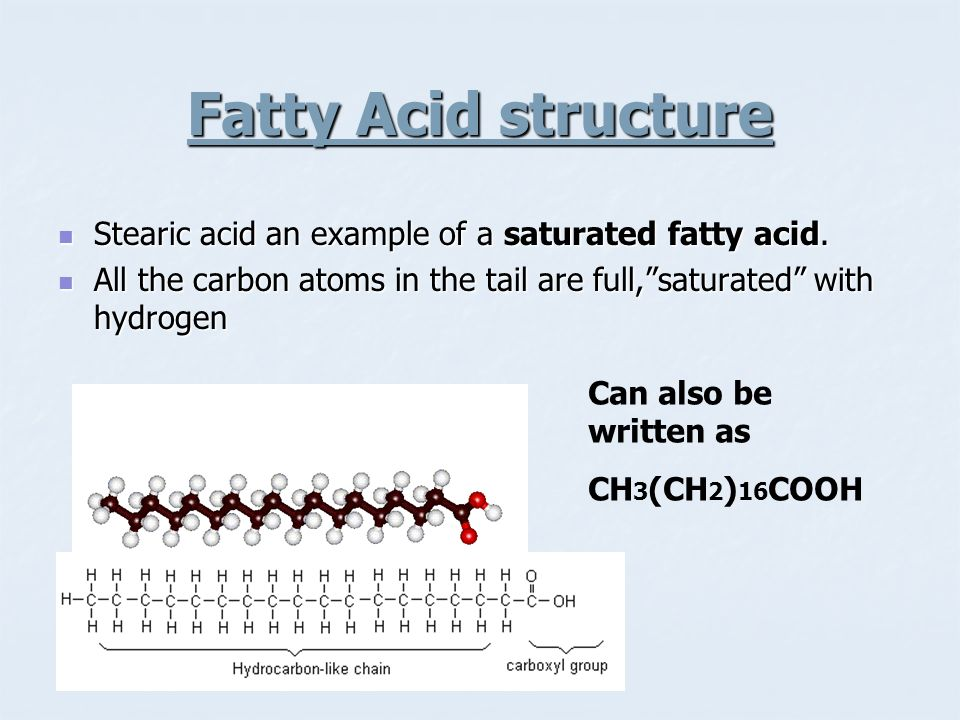 Fatty Acid structure Stearic acid an example of a saturated fatty acid. All the carbon atoms in the tail are full, saturated with hydrogen.