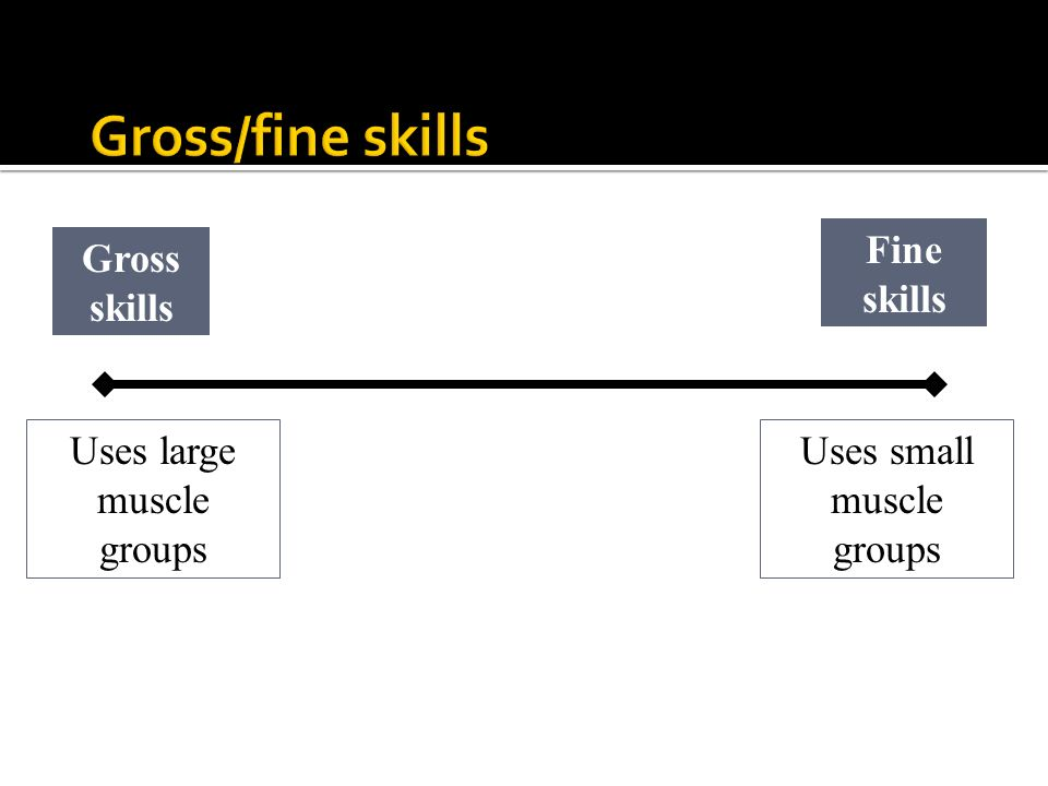 Gross/fine skills Gross skills Fine skills Uses large muscle groups
