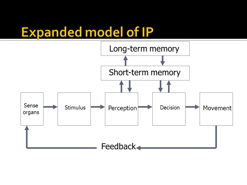 Expanded model of IP Long-term memory Short-term memory Feedback
