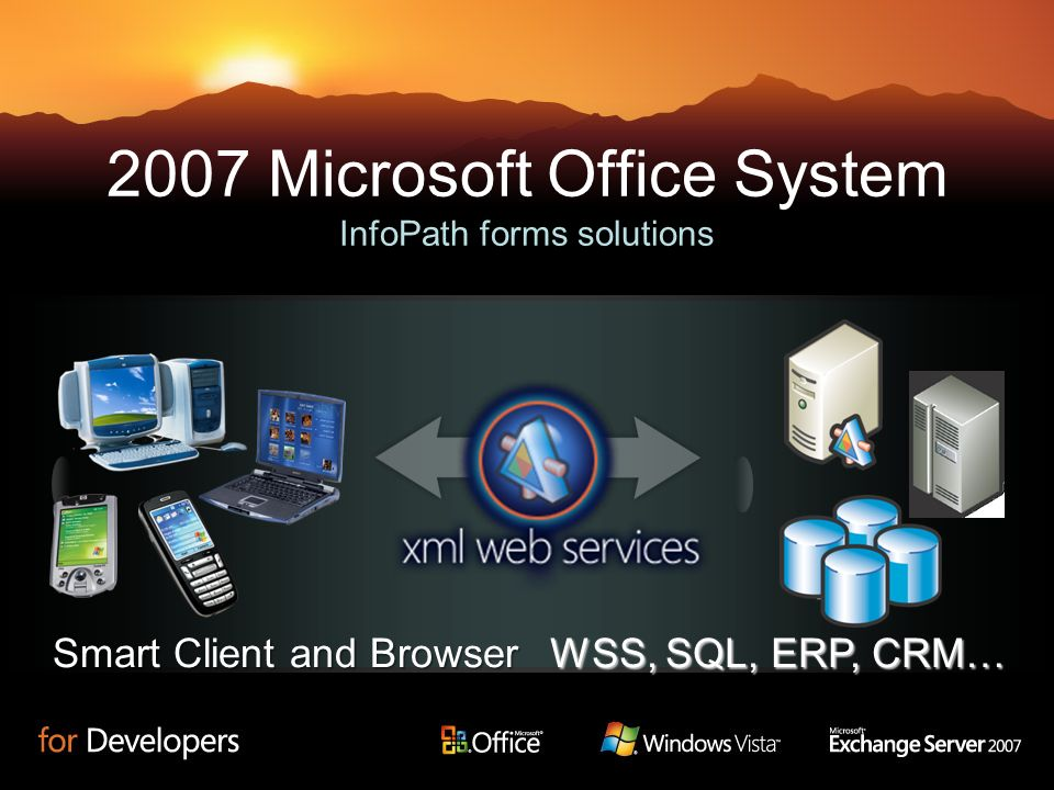 2007 Microsoft Office System InfoPath forms solutions