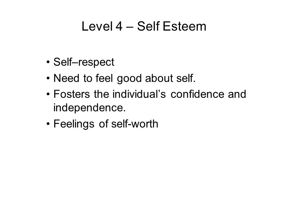 Level 4 – Self Esteem Self–respect Need to feel good about self.