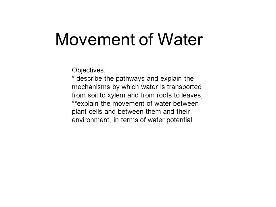 Movement of Water Objectives: