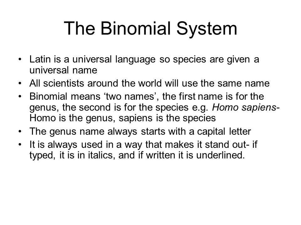 The Binomial System Latin is a universal language so species are given a universal name. All scientists around the world will use the same name.