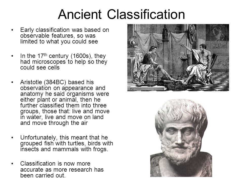 Ancient Classification