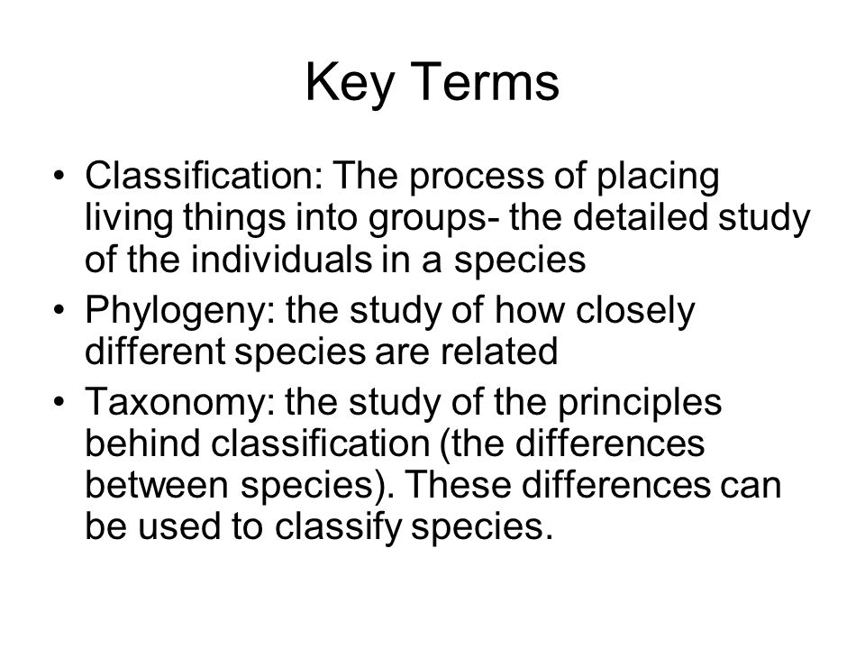 Key Terms Classification: The process of placing living things into groups- the detailed study of the individuals in a species.