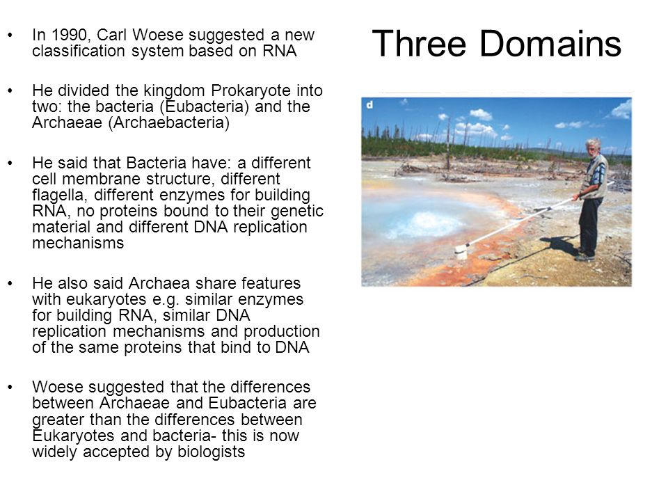 Three Domains In 1990, Carl Woese suggested a new classification system based on RNA.