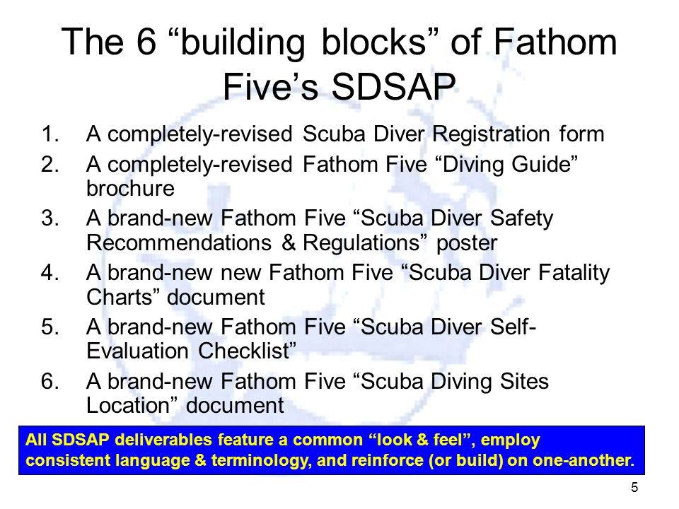 The 6 building blocks of Fathom Five's SDSAP