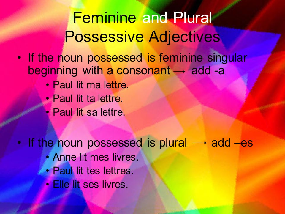 Feminine and Plural Possessive Adjectives