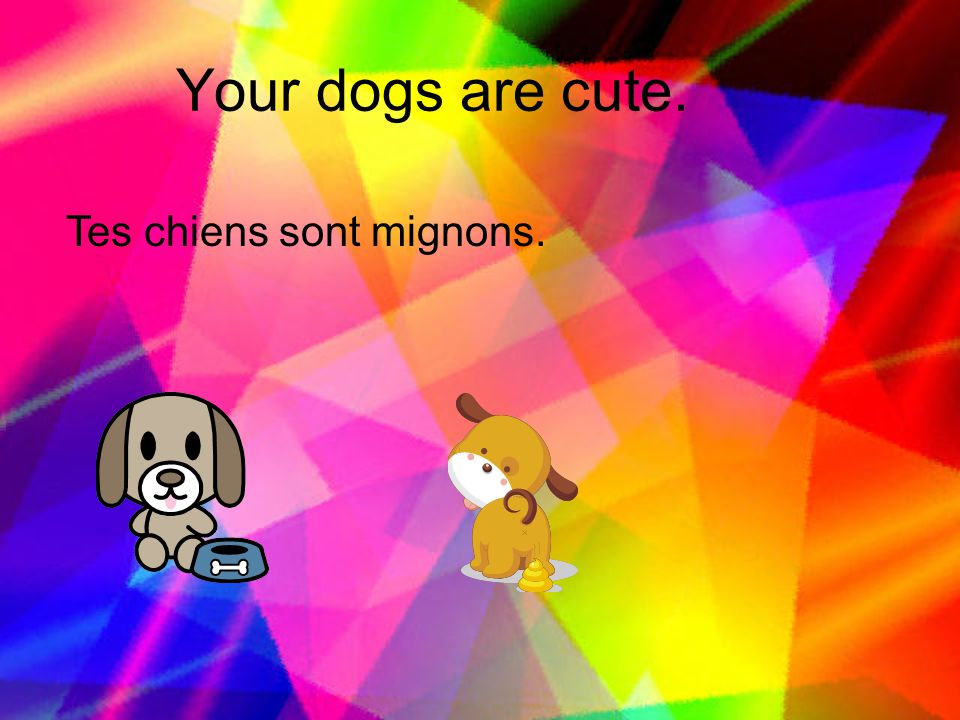 Your dogs are cute. Tes chiens sont mignons.
