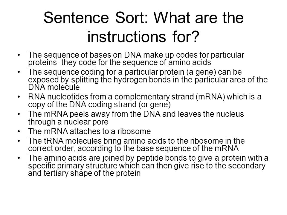 Sentence Sort: What are the instructions for