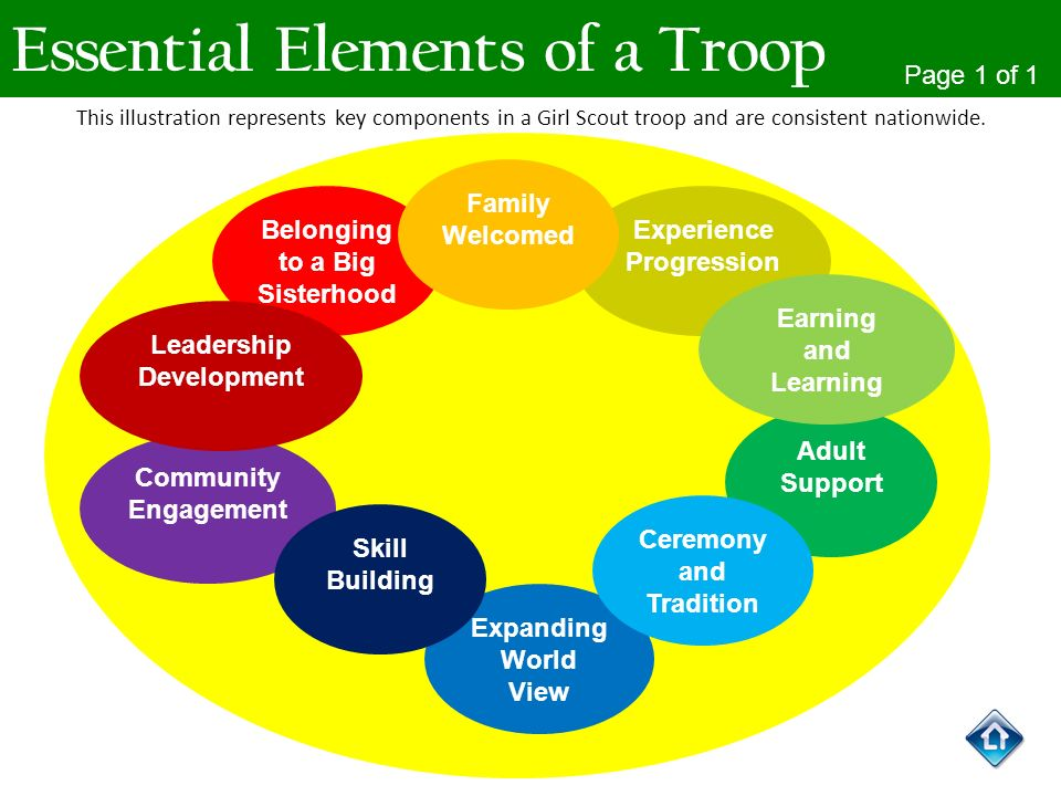 Essential Elements of a Troop