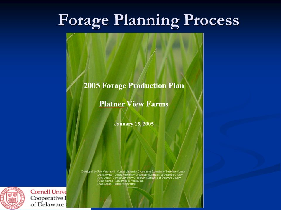 Forage Planning Process