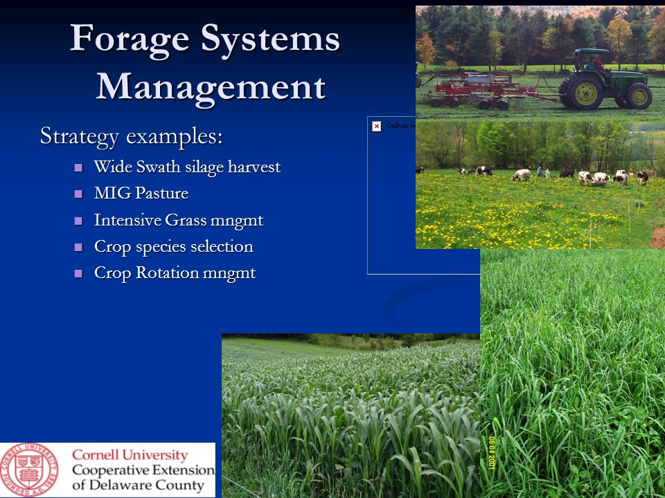 Forage Systems Management