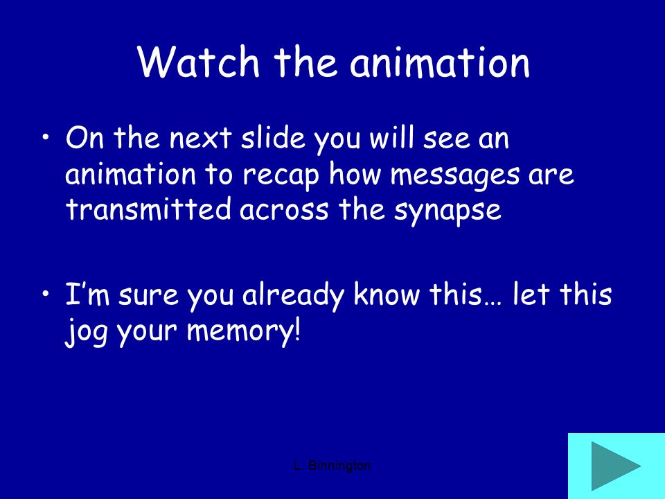Watch the animation On the next slide you will see an animation to recap how messages are transmitted across the synapse.