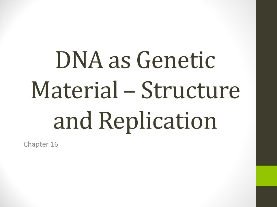 DNA as Genetic Material – Structure and Replication