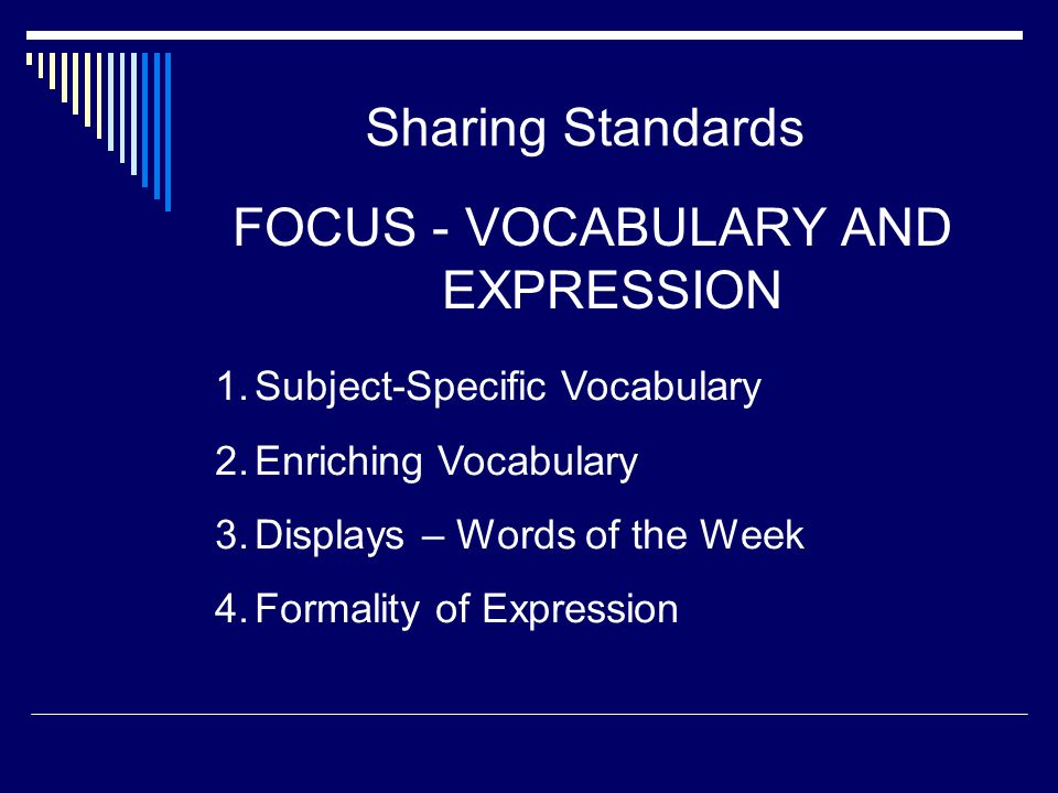 FOCUS - VOCABULARY AND EXPRESSION