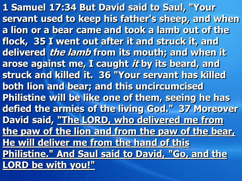 1 Samuel 17:34 But David said to Saul, Your servant used to keep his father s sheep, and when a lion or a bear came and took a lamb out of the flock, 35 I went out after it and struck it, and delivered the lamb from its mouth; and when it arose against me, I caught it by its beard, and struck and killed it.
