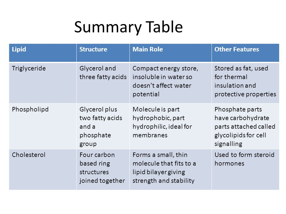 Summary Table Lipid Structure Main Role Other Features Triglyceride