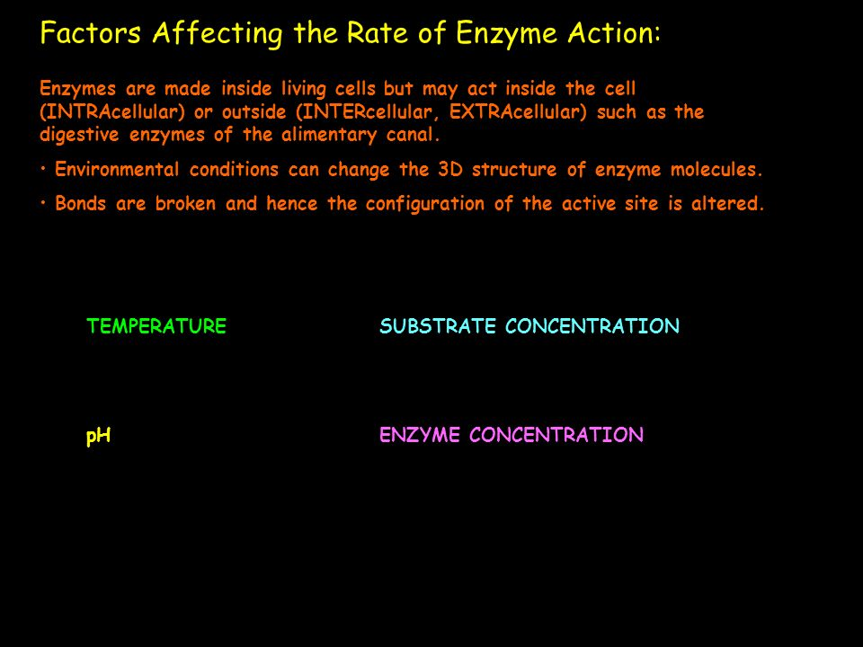 Factors Affecting the Rate of Enzyme Action: