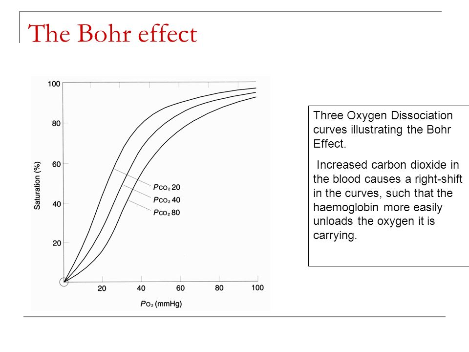 The Bohr effect Three Oxygen Dissociation curves illustrating the Bohr Effect.