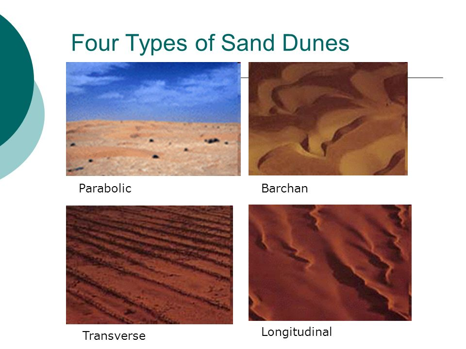 Four Types of Sand Dunes
