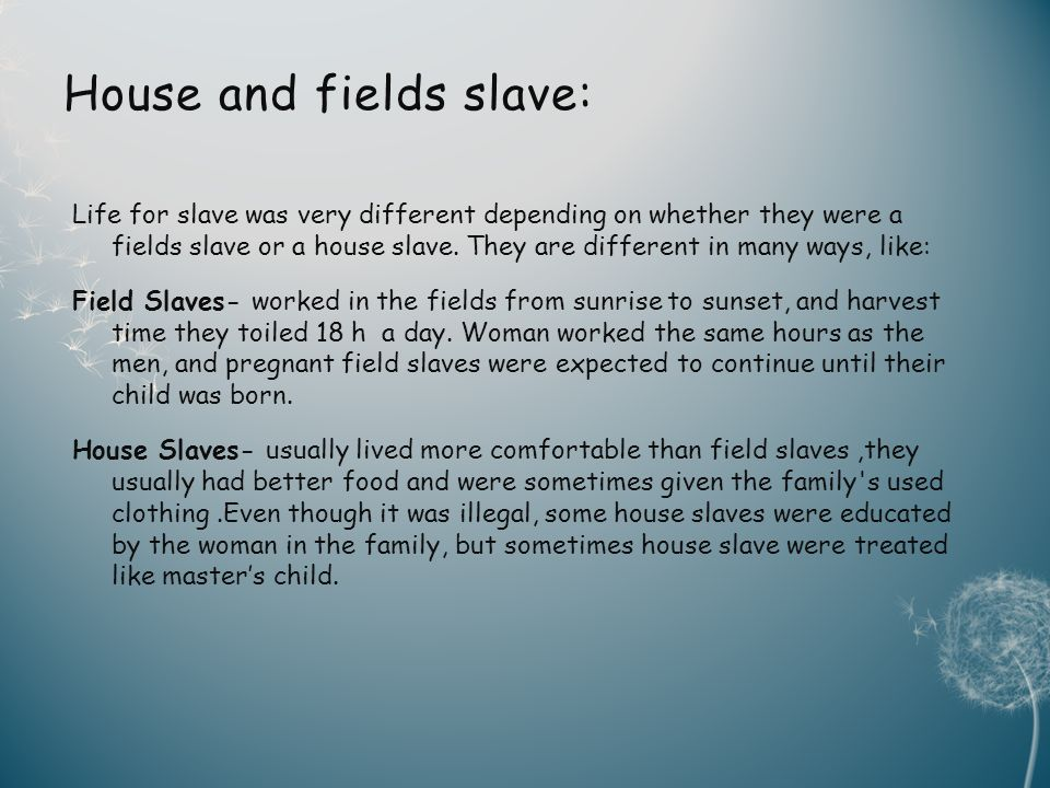 House and fields slave: