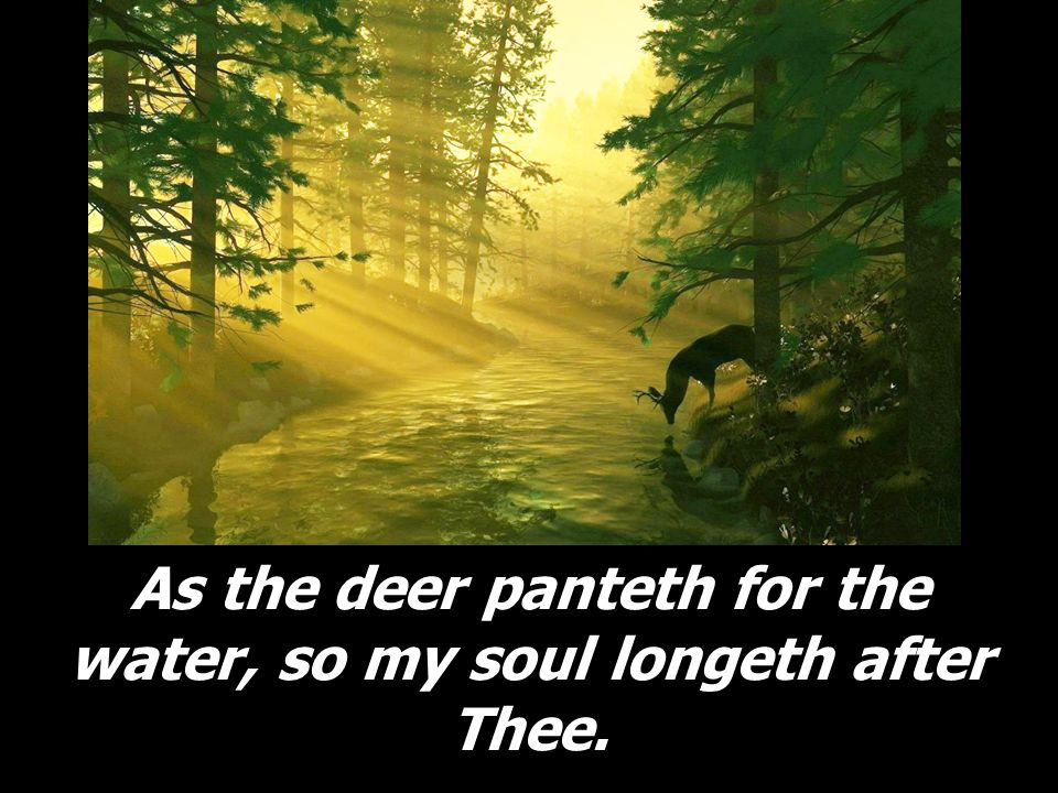 As the deer panteth for the water, so my soul longeth after Thee.