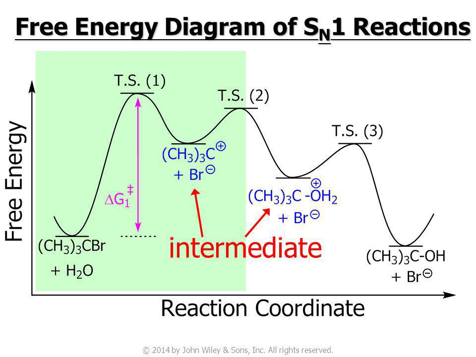 Potential Energy Diagram For Sn1 Reaction.Nucleophilic Substitution And Elimination Reactions Of Alkyl
