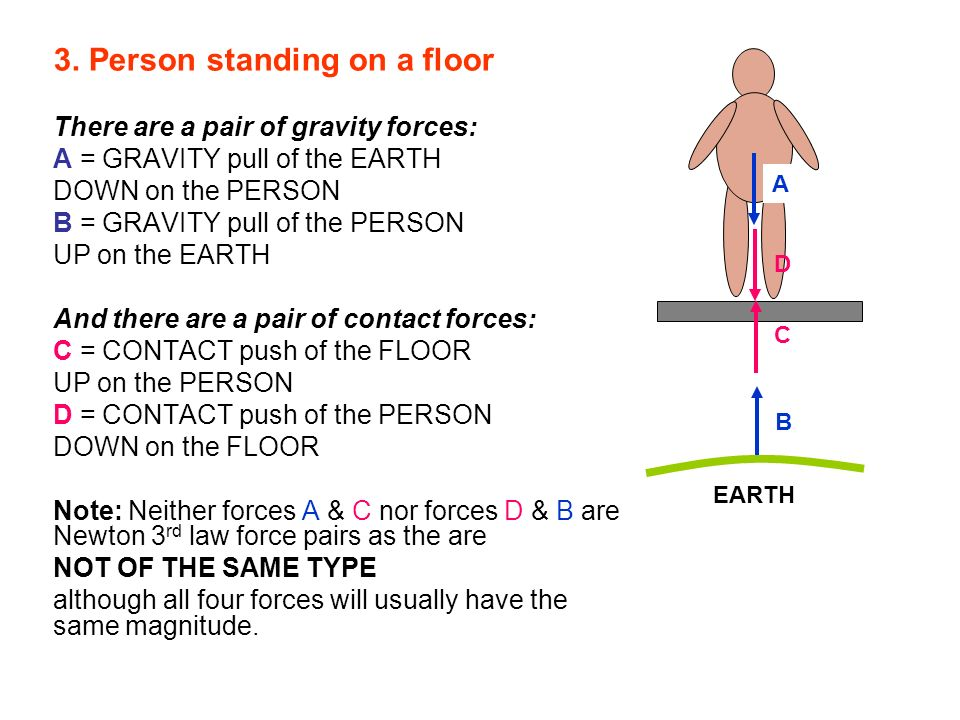 3. Person standing on a floor