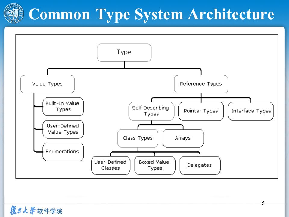 Common Type System Architecture