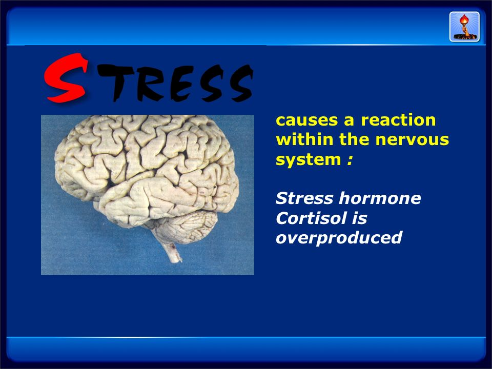 causes a reaction within the nervous system :