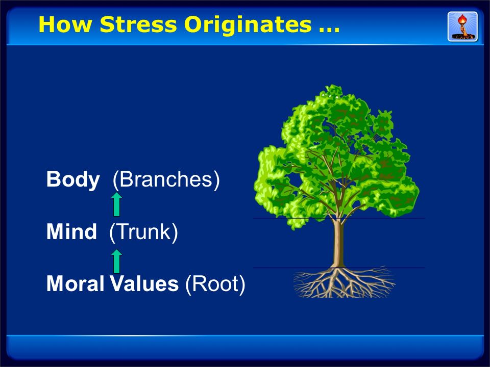 How Stress Originates …